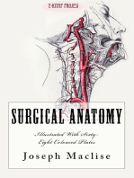 """Surgical Anatomy: """"With Sixty-Eight Coloured Plates"""""""