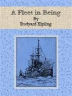 A Fleet in Being
