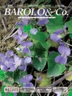 Barolo&Co. International - Year XXXIII - Number I