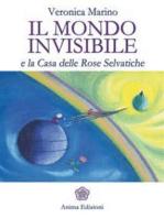 Mondo invisibile (Il)