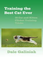 Training the Best Cat Ever