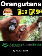 Orangutans For Kids