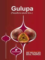 Manual para el cultivo de frutales en el trópico. Gulupa