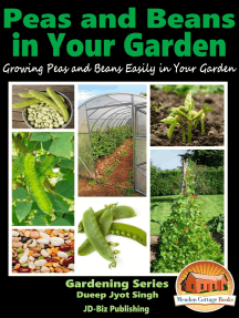 Peas and Beans in Your Garden: Growing Peas and Beans Easily in Your Garden