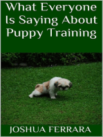 What Everyone Is Saying About Puppy Training