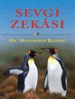 Sevgi Zekasi