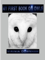 My First Book on Owls