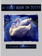 My First Book on Ducks