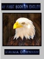 My First Book on Eagles