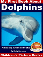 My First Book About Dolphins