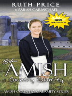 Before An Amish Country Calamity