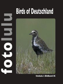 Birds of Deutschland: fotolulus Bildband IX