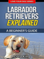Labrador Retrievers Explained - A Beginner's Guide (Love Your Dog Series, #4)