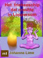 Het frisbeeschip dat crashte in Loppersum