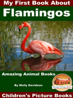 My First Book About Flamingos