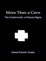 More Than a Cave