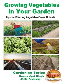 Growing Vegetables in Your Garden: Tips for Planting Vegetable Crops Outside