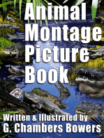 Animal Montage Picture Book