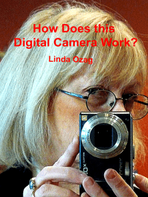 How Does this Digital Camera Work?