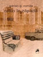 Radio în zăpadă