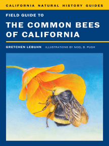Field Guide to the Common Bees of California: Including Bees of the Western United States