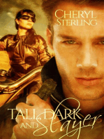 Tall, Dark and Slayer, a Paranormal Romance