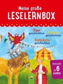 Meine große Leselernbox: Tiergeschichten, Hexengeschichten, Detektivgeschichten: Mit 3 Lesestufen