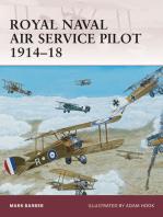 Royal Naval Air Service Pilot 1914–18
