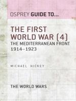 The First World War (4)