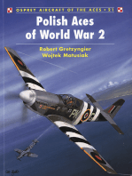 Polish Aces of World War 2