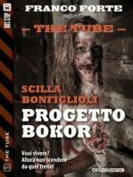 Progetto Bokor