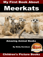 My First Book about Meerkats