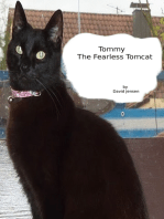 Tommy the Fearless Tomcat