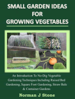 Small Garden Ideas For Growing Vegetables