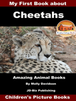 My First Book about Cheetahs