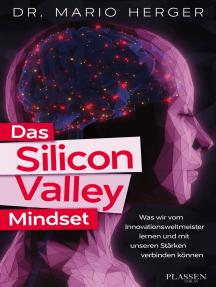 Das Silicon Valley Mindset: Was wir vom Innovationsweltmeister lernen und mit unseren Stärken verbinden können