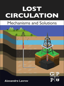 Lost Circulation: Mechanisms and Solutions