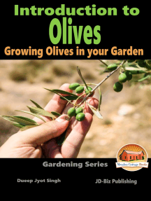 Introduction to Olives: Growing Olives in your Garden