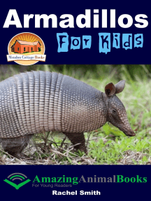 Armadillos For Kids