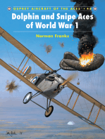 Dolphin and Snipe Aces of World War 1