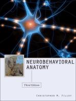 Neurobehavioral Anatomy, Third Edition