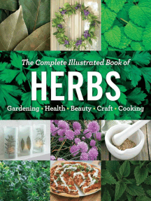 The Complete Illustrated Book of Herbs: Growing • Health & Beauty • Cooking • Crafts