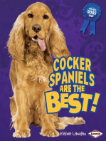 Cocker Spaniels Are the Best!