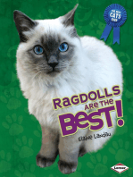 Ragdolls Are the Best!