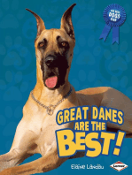 Great Danes Are the Best!