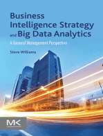 Business Intelligence Strategy and Big Data Analytics