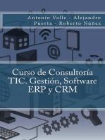 Curso de Consultoría TIC. Gestión, Software ERP y CRM