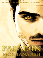 Paladin (Book Two of the Elemental Paladins series)