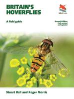 Britain's Hoverflies