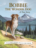 Bobbie the Wonder Dog